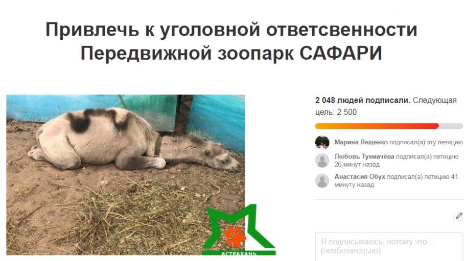 Зоозащитники требуют запретить передвижные зверинцы на территории Астрахани