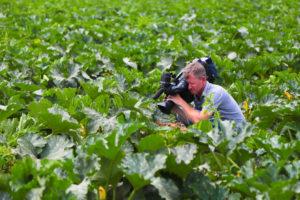 Астраханская область привлечет в сельское хозяйство 30 млрд рублей