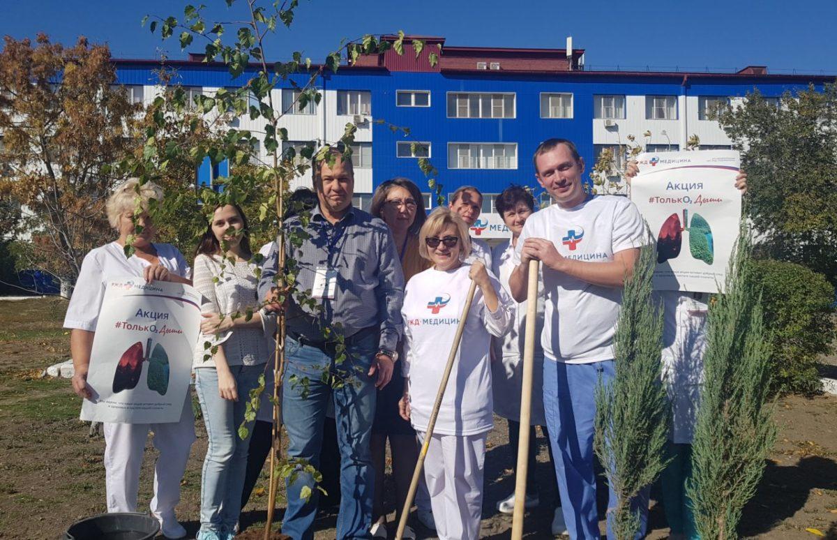 Врачи посадили деревья во дворе «Клинической больницы «РЖД-Медицина»