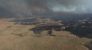 Специалисты рассказали почему ежегодно горит Астраханская область
