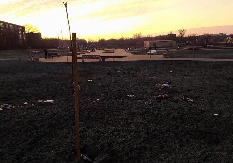 Новый парк в III Интернационале уже закидали мусором