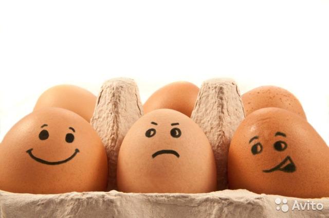 В Астраханской области стало больше яиц