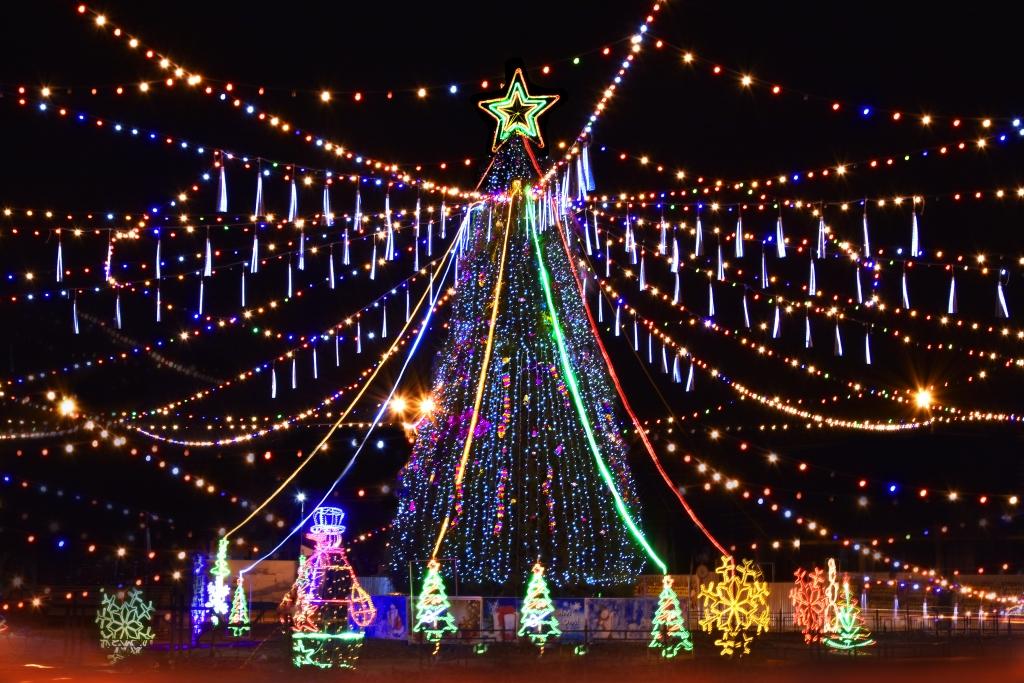 Куда сходить в Астрахани на новогодние праздники
