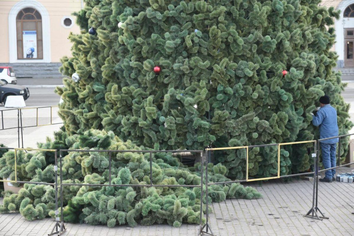 В Астрахани подросла новогодняя елка