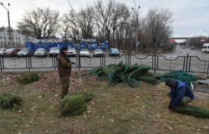 В Астрахани кремируют брошенные елки