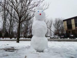 Астрахань накрыло поздним снегом впервые с 2010 года