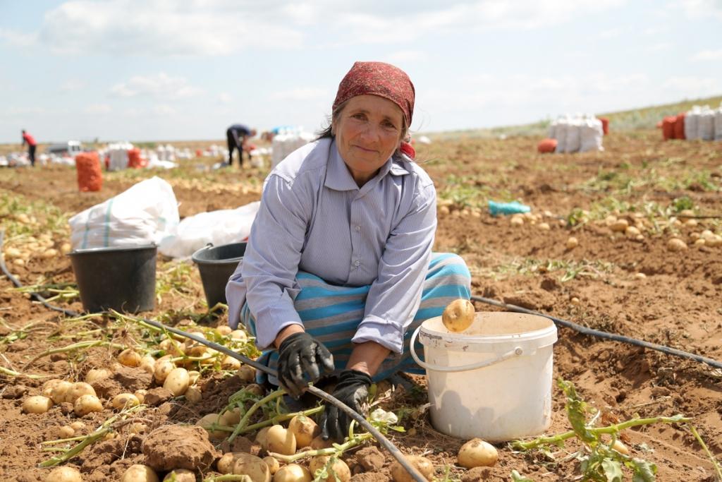 Астраханские фермеры жалуются на проблемы со сбытом продукции