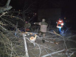 В Астрахани на детскую площадку упало большое дерево