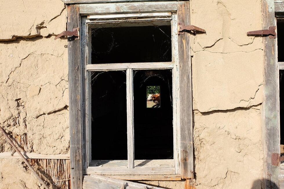 Население Астраханской области сокращается