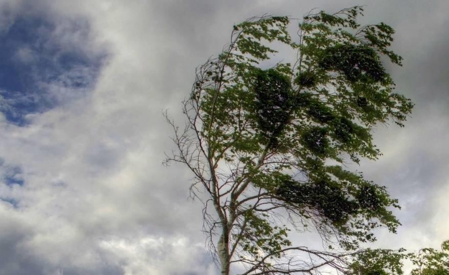 В Астраханской области ожидается сильный ветер