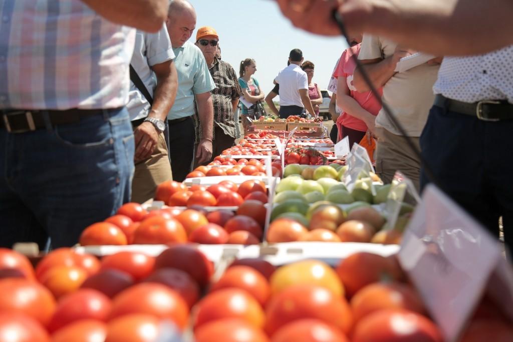 Россиян предупреждают о скором подорожании томатов
