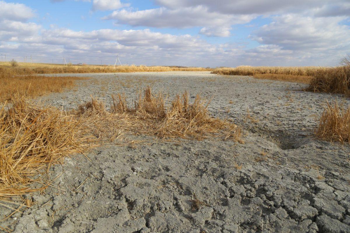 Эксперты прогнозируют возможную засуху в Астраханской области