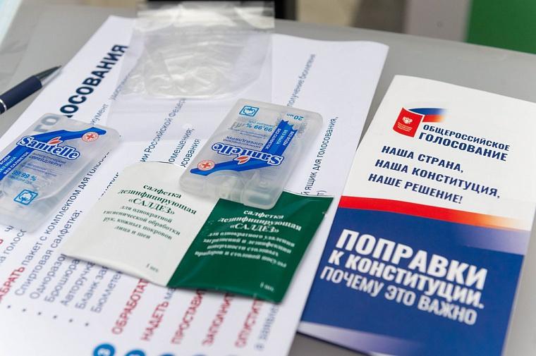 Избирком разъяснил механизм голосования по поправкам в Конституцию на дому
