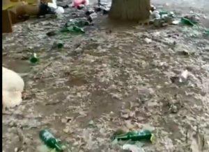 Астраханцы забросали палисадник грудой пустых бутылок