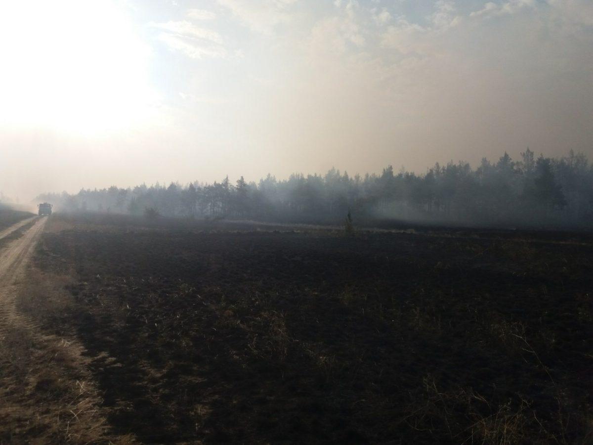 Соседний от Астрахани регион полыхает пожарами, вероятен запах гари