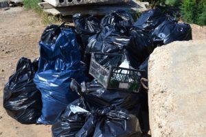 С астраханских берегов вывезли 24 мешка с мусором