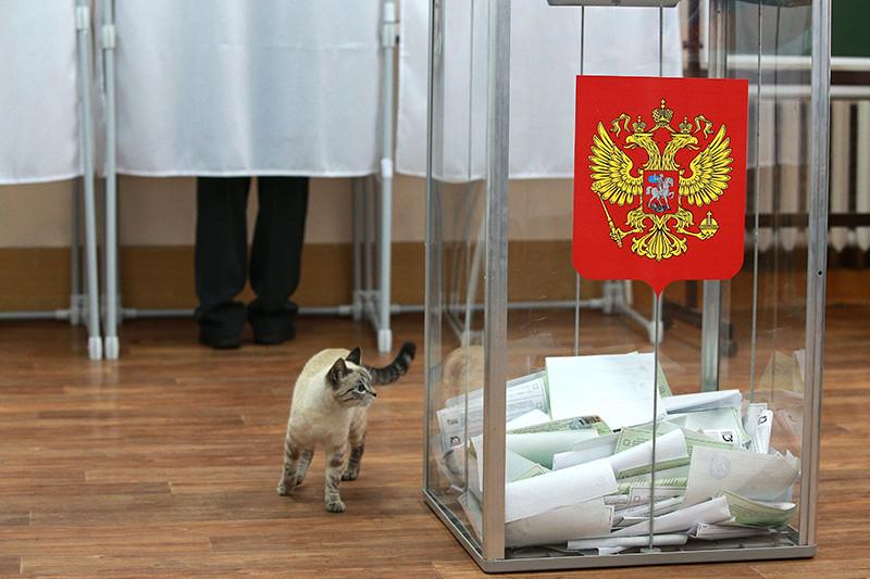 Нового главу избиркома Астраханской области изберут до 17 сентября