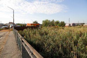 В Астрахани ищут собственника трубы, которая загрязняет Казачий ерик
