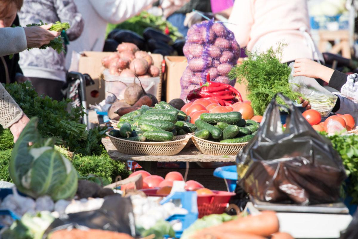 Цены на фрукты и овощи в России могут снизиться на фоне нового урожая
