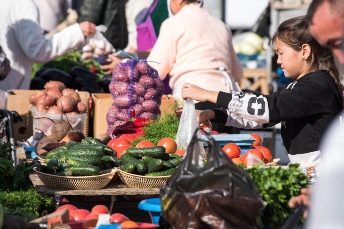 Огурцы на астраханских рынках подешевели до 50 рублей