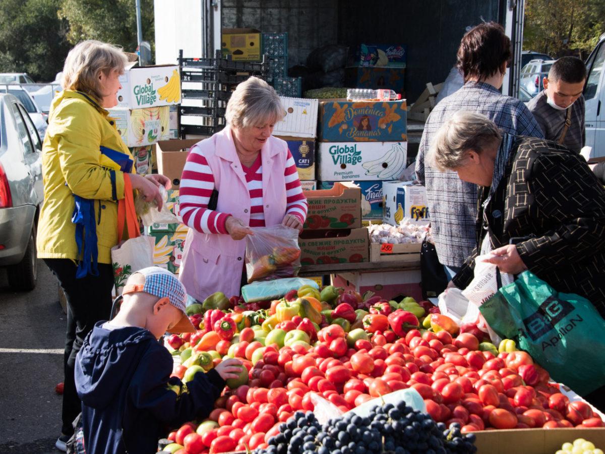 Астраханская область стала лидером российского овощеводства