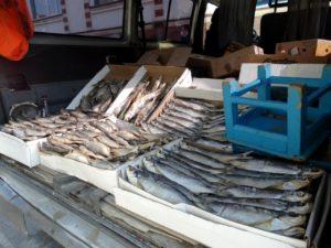 В Астрахани ведут борьбу со стихийной торговлей рыбой