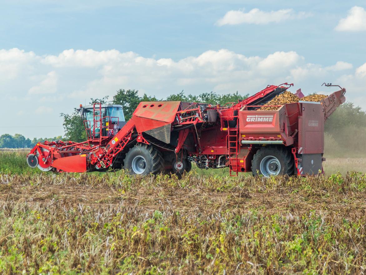 Немецкая техника помогает астраханским фермерам убирать картофель