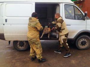Бригада по отлову бродячих псов отправилась в микрорайон Бабаевского