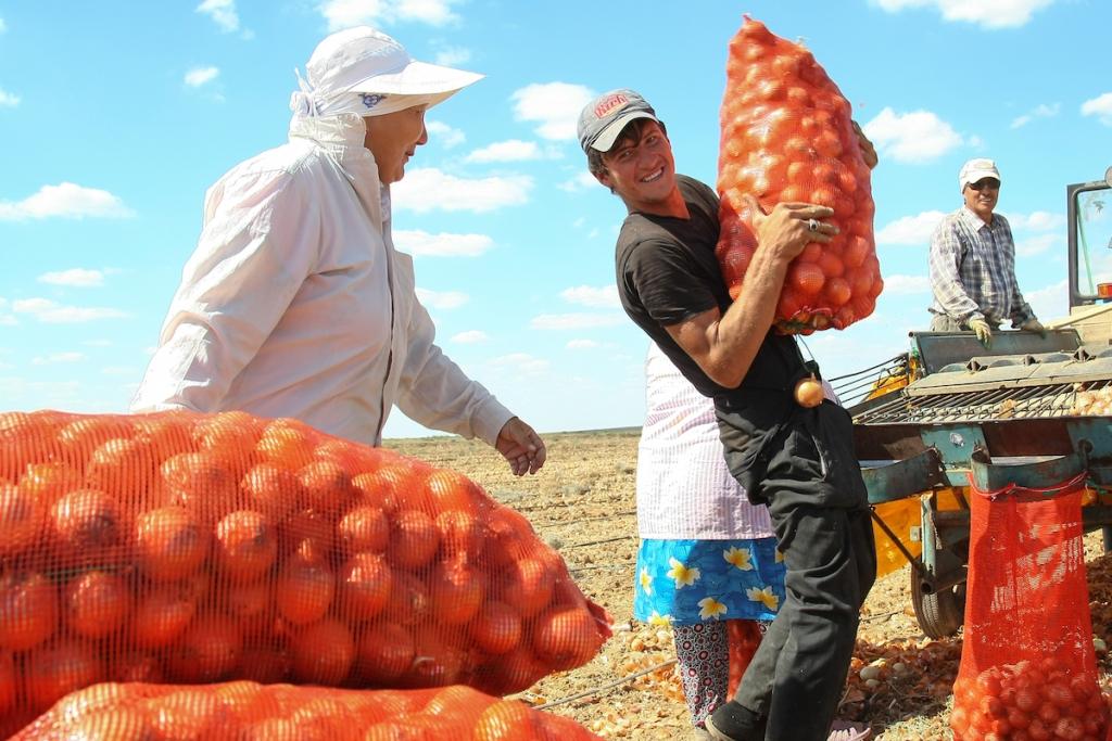 В Астраханской области собрали более 2 млн тонн урожая