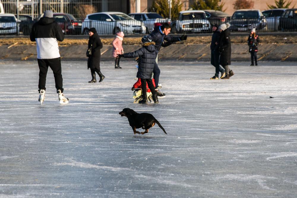 31 декабря в Астраханской области станет выходным