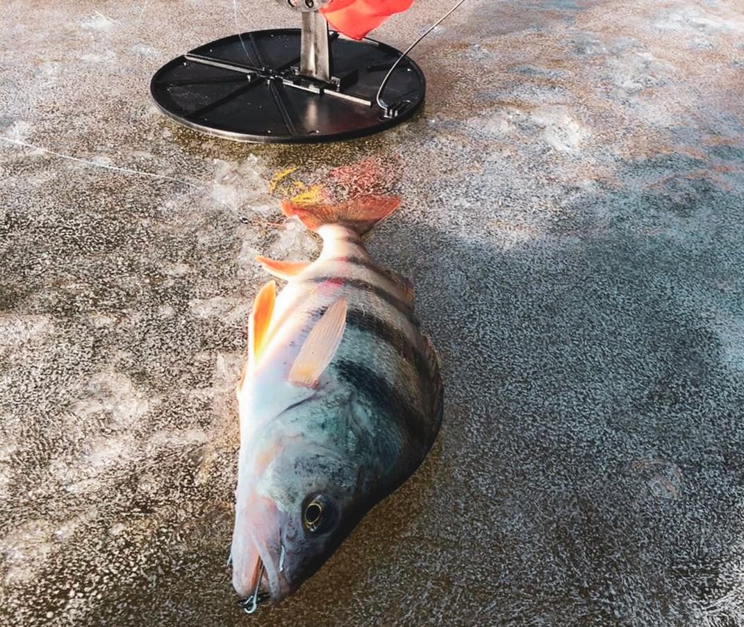 Игорь Бабушкин провел выходной за рыбалкой
