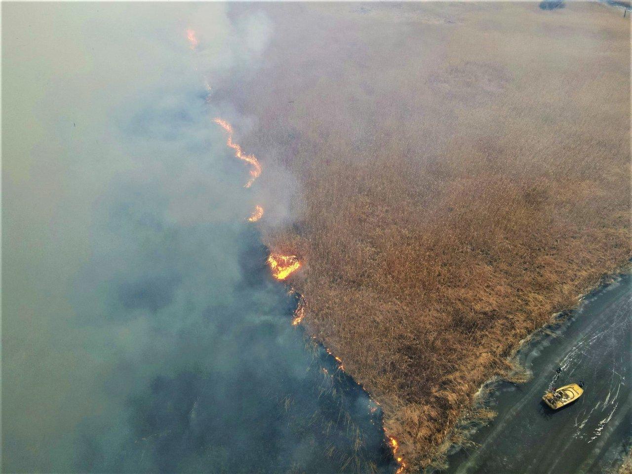 Пожар в астраханском заповеднике пока не навредил животным и птицам