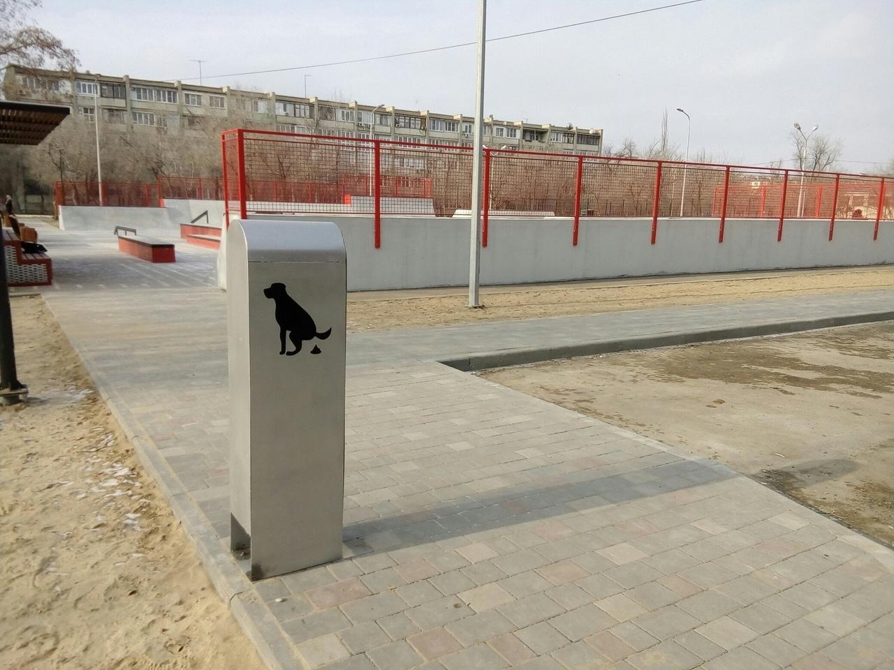 Астраханским собакам организовали уличный туалет