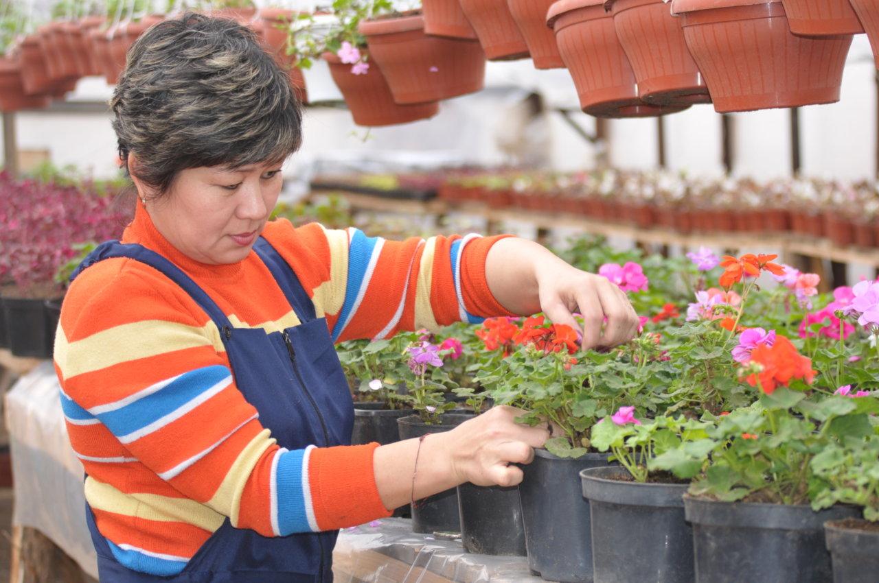 В Астрахани высадят свыше полумиллиона цветов и новые деревья