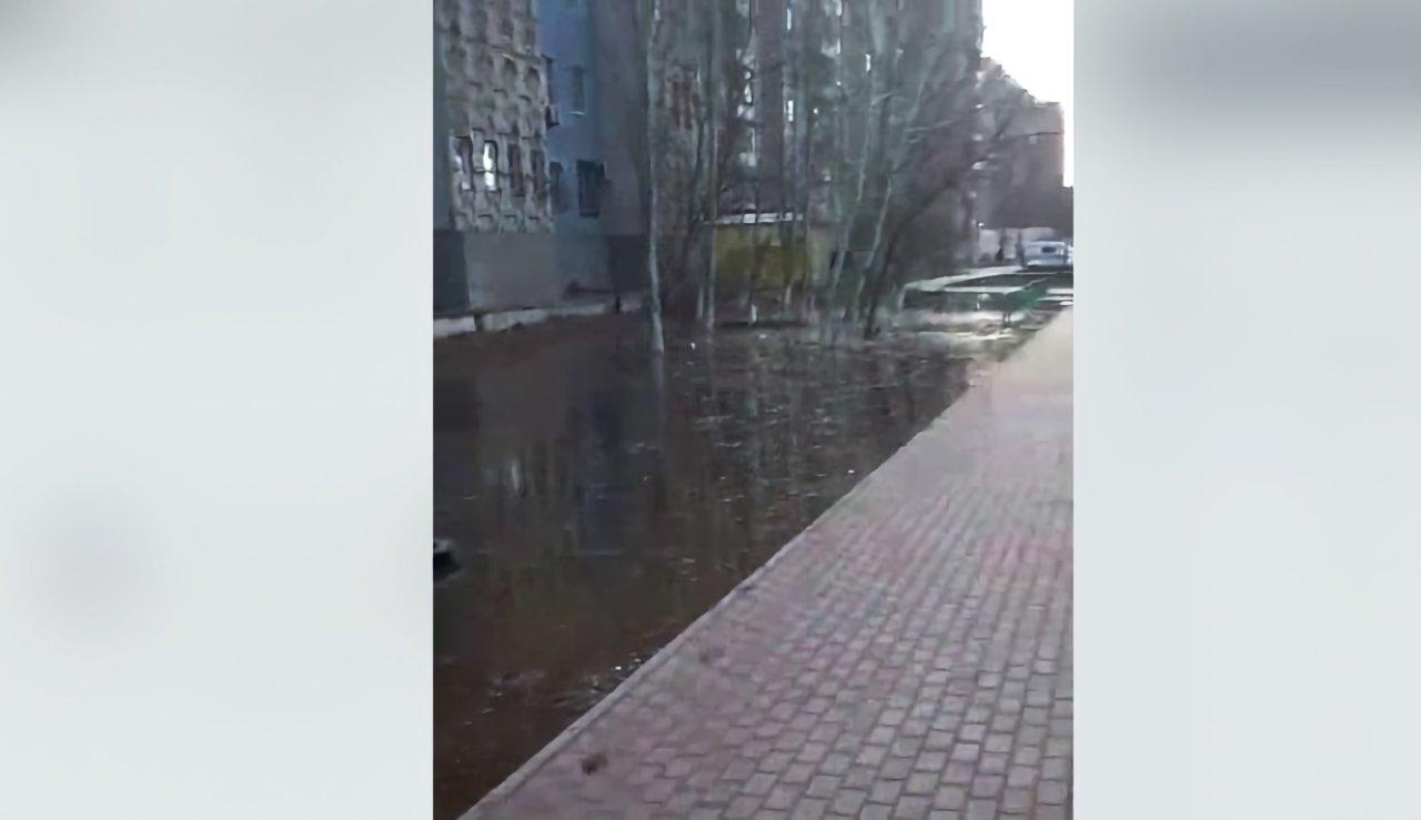 На улице Куликова снова разлилось канализационное болото