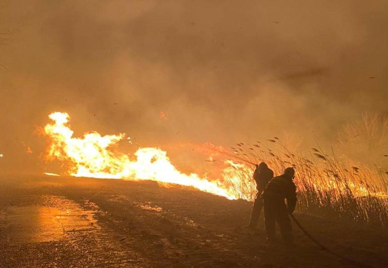 Пожарные спасли поселок под Астраханью от уничтожения огнем
