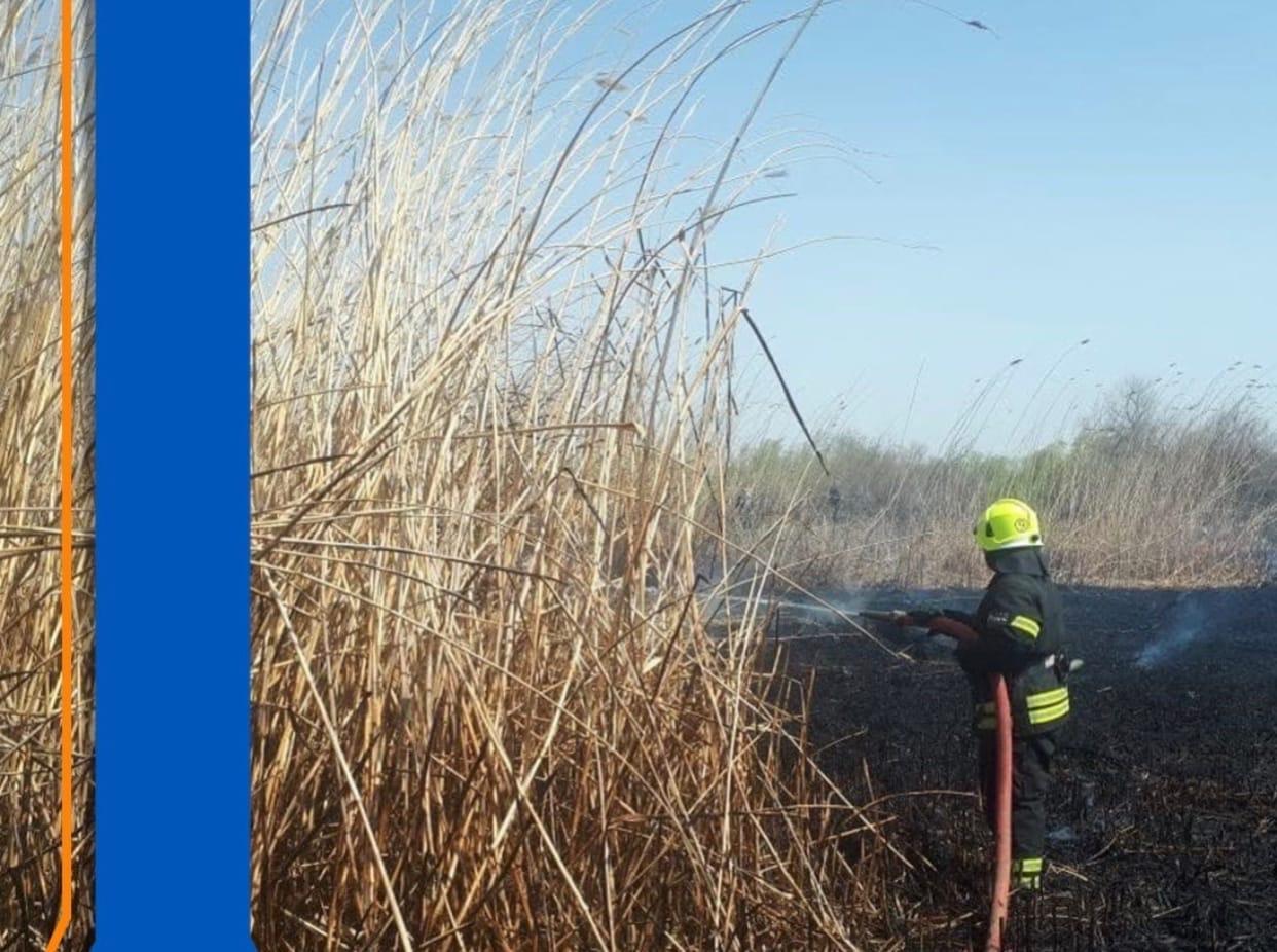 В Приволжском районе горит камыш на площади 50 кв метров