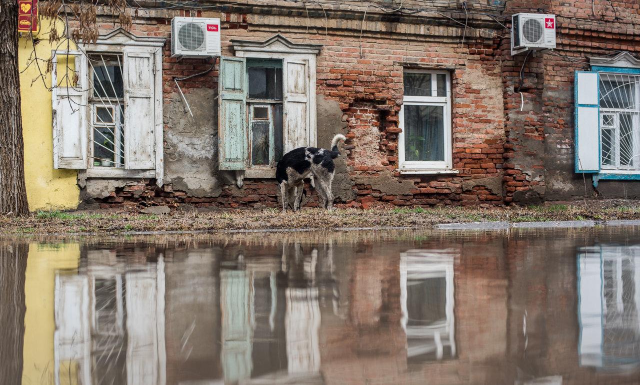 В Астраханской области фиксируют снижение качества жизни