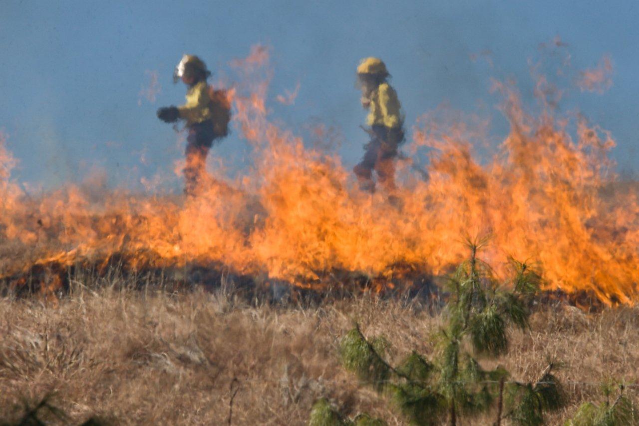Пожар в Казахстане на границе с Астраханской областью потушили