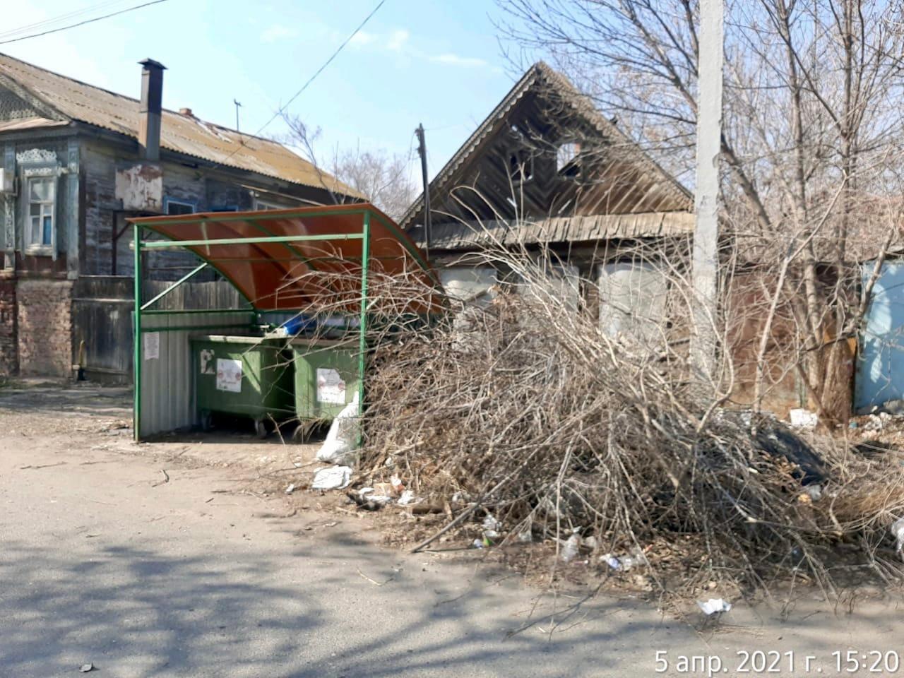 Астраханцам напомнили о недопустимости выбрасывания веток в мусорные контейнеры