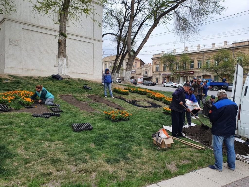 В Астрахани высадят полмиллиона цветов