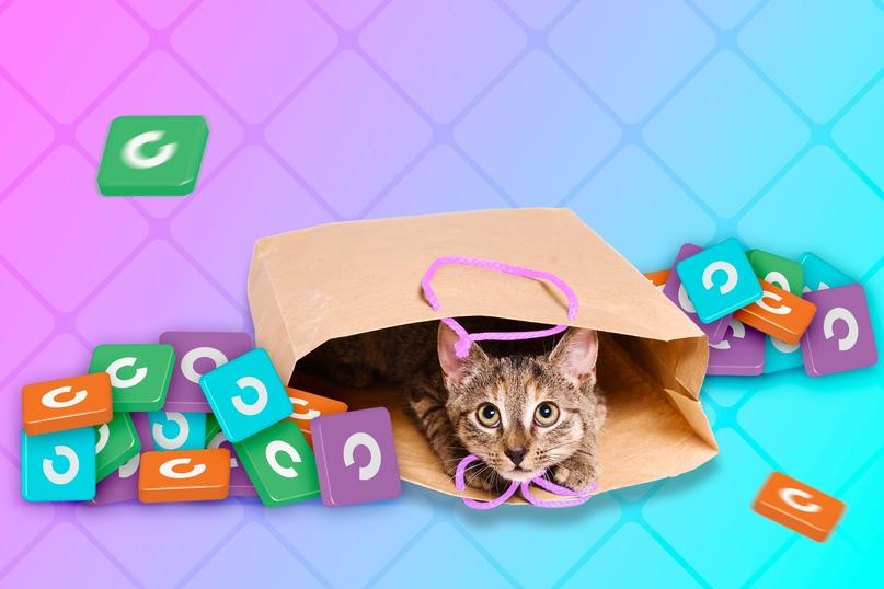 Сеть зоомагазинов и ветеринарных аптек «Астветмаркет» присоединилась к бонусной программе СберСпасибо