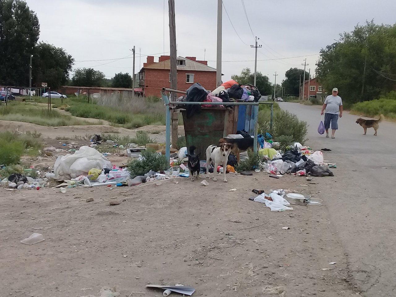 Икрянинский район утопает в мусоре