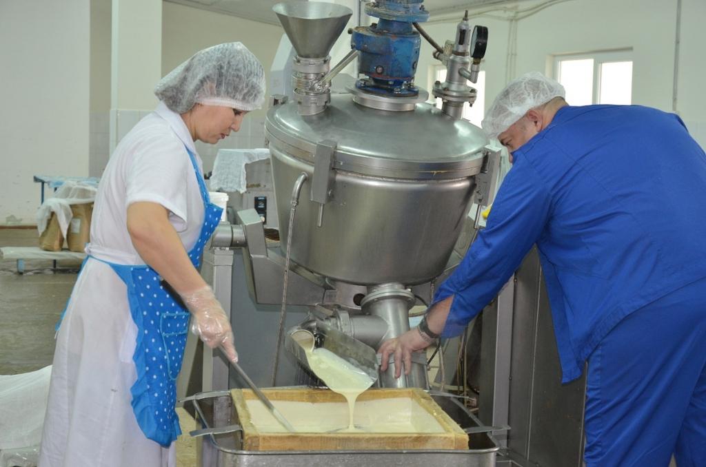 Астраханские предприятия производят 700 тонн сырных продуктов в год