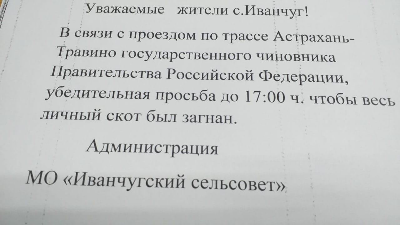 Астраханских сельчан попросили загнать скот из-за проезда чиновника правительства РФ