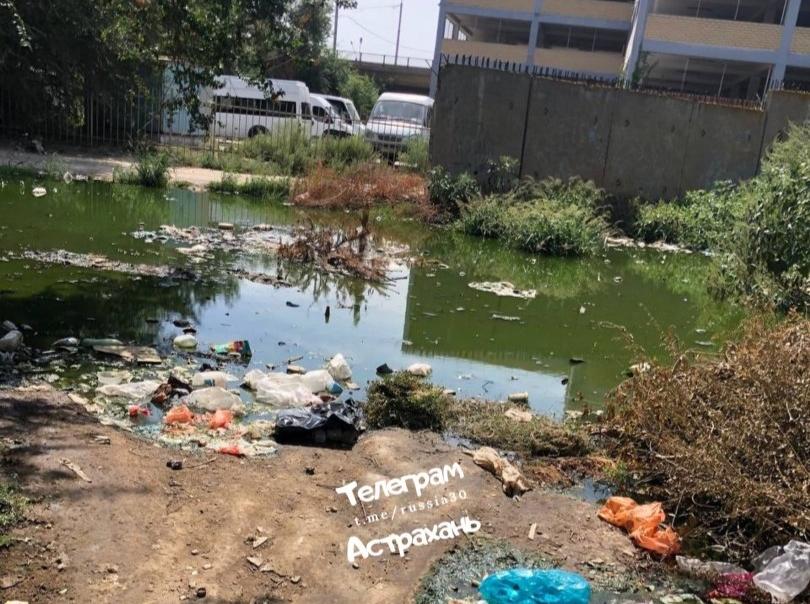 В Советском районе Астрахани жители жалуются на мусорное болото
