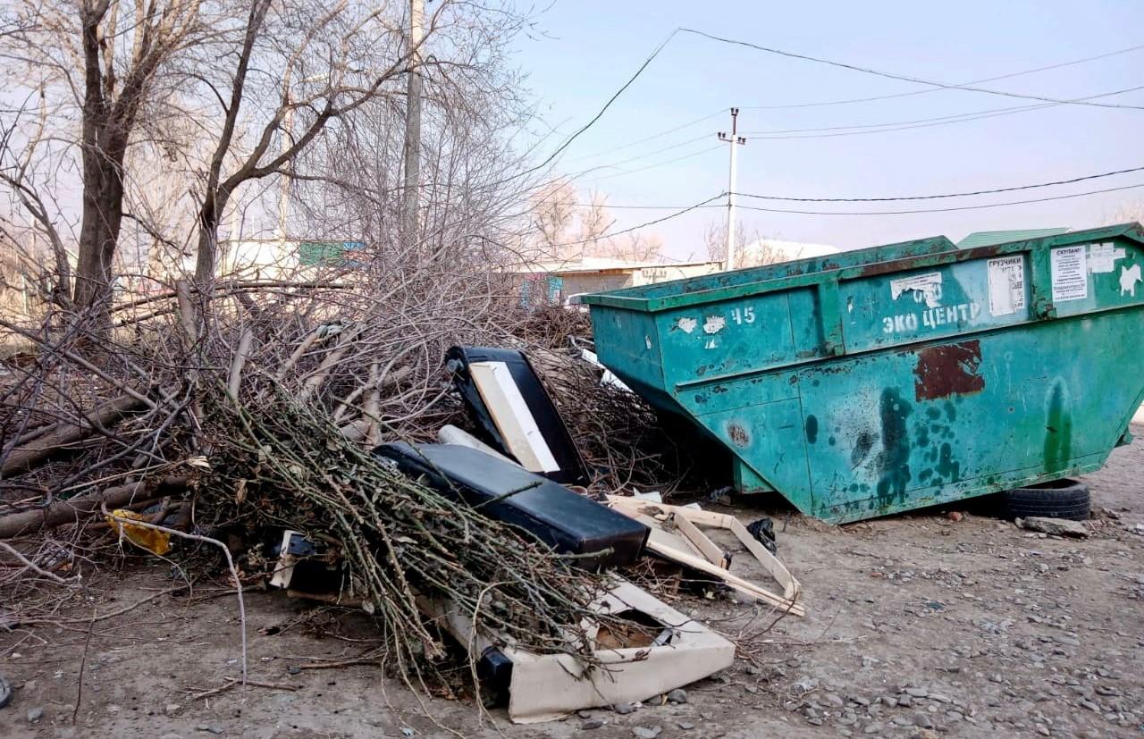 ООО «ЭкоЦентр»: растительные отходы запрещено выбрасывать в тару и оставлять на контейнерных площадках