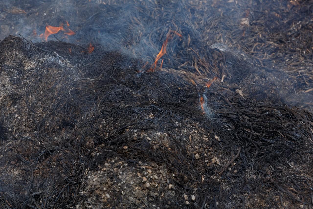 Астраханцам объяснили, почему пожар в Казахстане не могут потушить